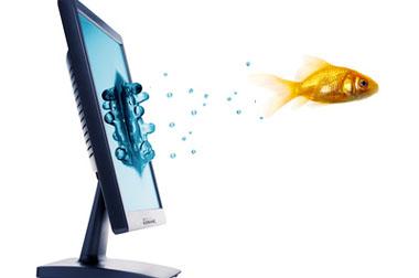 … vom Computer direkt zum Druck …
